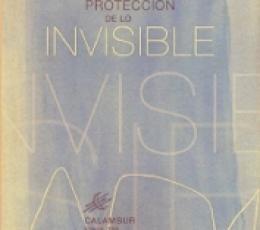 LA PROTECCION DE LO INVISIBLE / PUERTO, JOSE LUIS