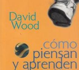 CÓMO PIENSAN Y APRENDEN LOS NIÑOS / DAVID, WODD
