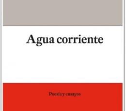 AGUA CORRIENTE (BILINGÜE) / ANNE CARSON