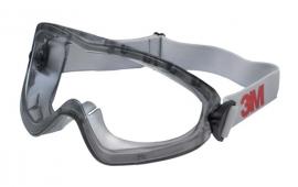 Gafas panorámicas 2890