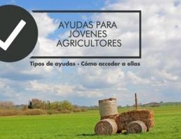 AYUDAS A JÓVENES AGRICULTORES PARA LA PRIMERA INSTALACIÓN