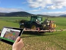 AYUDAS PARA IMPULSAR LA INNOVACIÓN EN EL SECTOR AGROALIMENTARIO Y FORESTAL