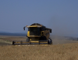 AYUDAS PARA EL ACCESO A LA FINANCIACION DE AGRICULTORES