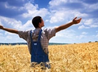 La Junta amplía a 90 millones las ayudas de 2015 para facilitar la incorporación de jóvenes a la actividad agrícola y ganadera.