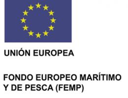SUBVENCIONES PARA EL DESARROLLO SOSTENIBLE DE PESCA (Programa Operativo del Fondo Europeo Marítimo y...