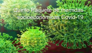 Medidas socioeconómicas, laborales y fiscales para paliar los efectos de la crisis sanitaria Covid-19 (5º Paquete).