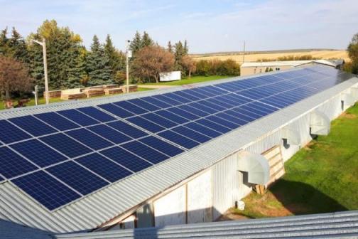 SUBVENCIONES PARA PROYECTOS DE EFICIENCIA ENERGÉTICA Y ENERGÍAS RENOVABLES EN EXPLOTACIONES AGROPECUARIAS