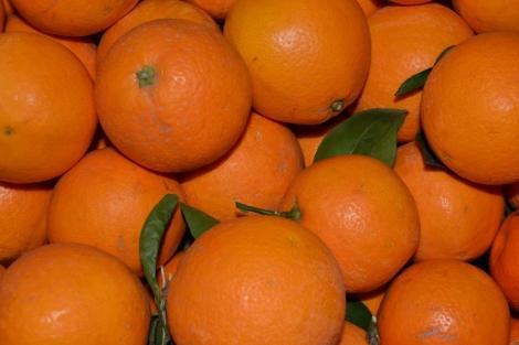Naranja Navelate