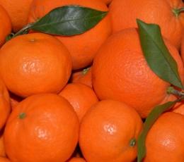 Caja mixta naranjas