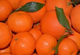 Caja mixta mandarinas