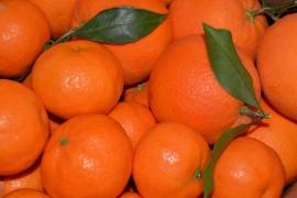Caja naranjas y mandarinas 15 Kg
