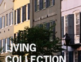 Coleccion Living