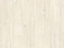 ROBLE BLANCO CHARLOTTE CR3178